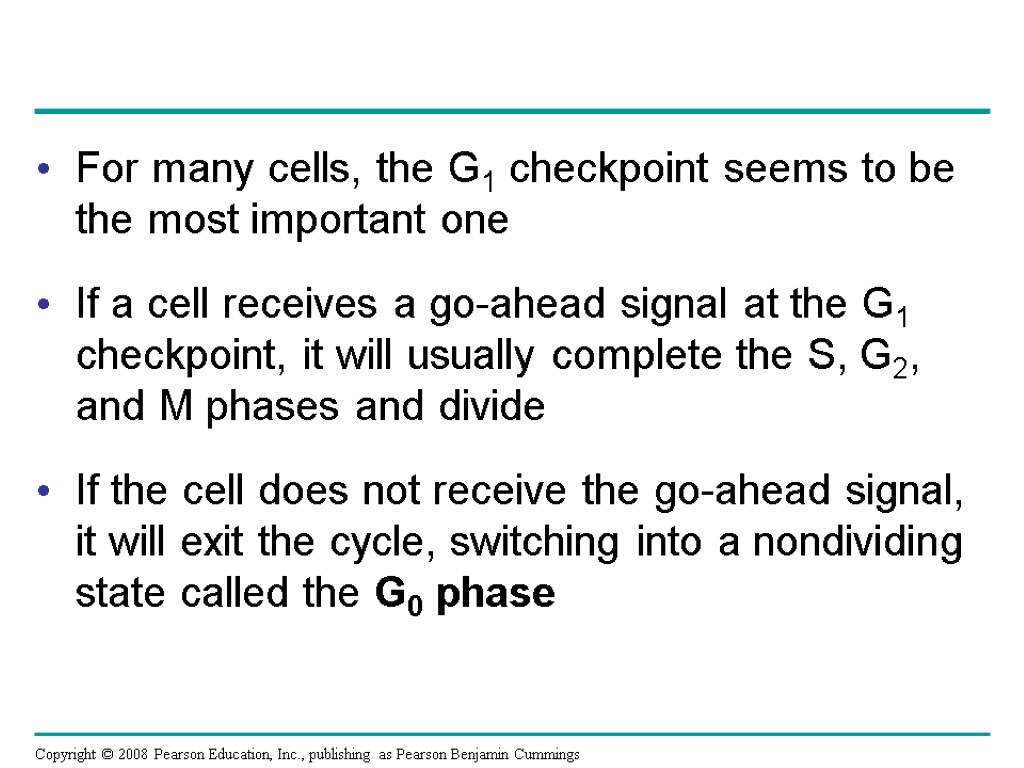 For many cells, the G1 checkpoint seems to be the most important one If