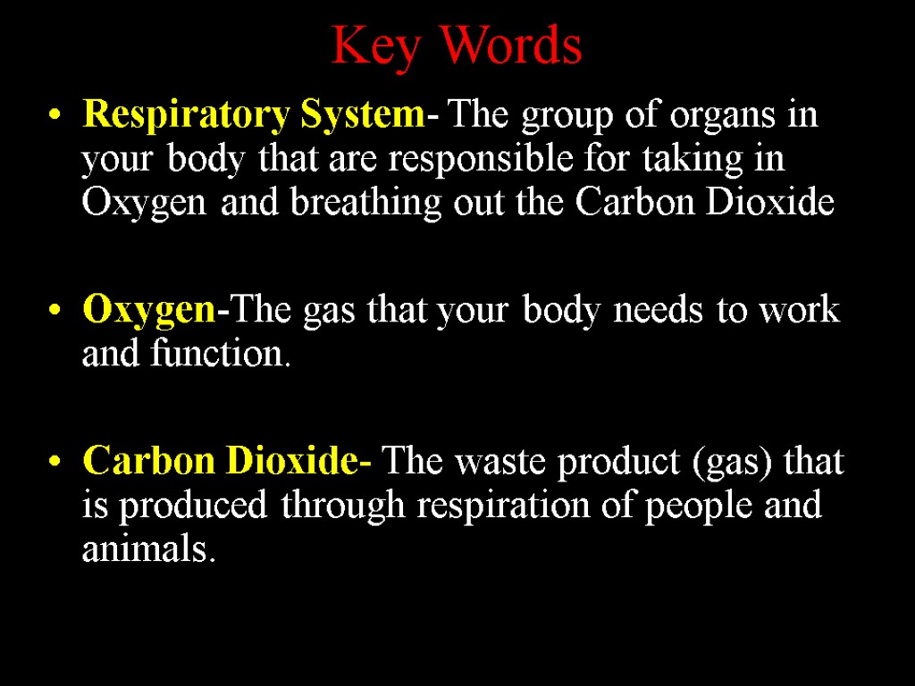 Oxygen Cell Hi I Am O 2 Respiratory System Function And Diagrams Breathing Key Words The Group Of Organs In Your Body That Are Responsible