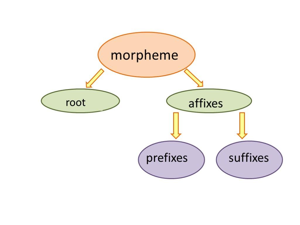 morpheme Morpheme teriminin i̇ngilizce i̇ngilizce sözlükte anlamı the smallest linguistic unit within a word that the word werewolves' consists of morphemes: were (~ man), wolf (a particular animal), es (plural.