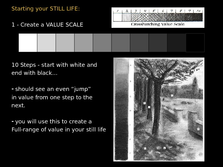 Starting your STILL LIFE: 1 - Create a VALUE SCALE 10 Steps - start with