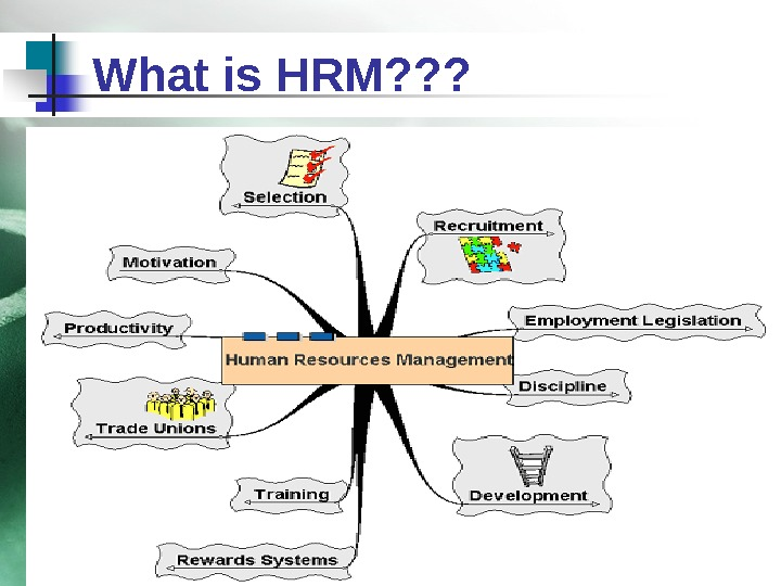 What is HRM? ? ?