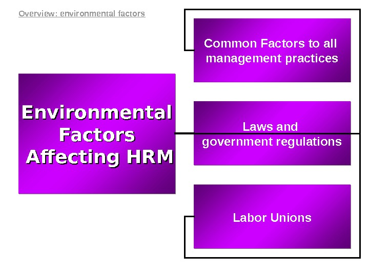 Common Factors to all management practices Environmental Factors  Affecting HRMAffecting HRM Laws and government regulations