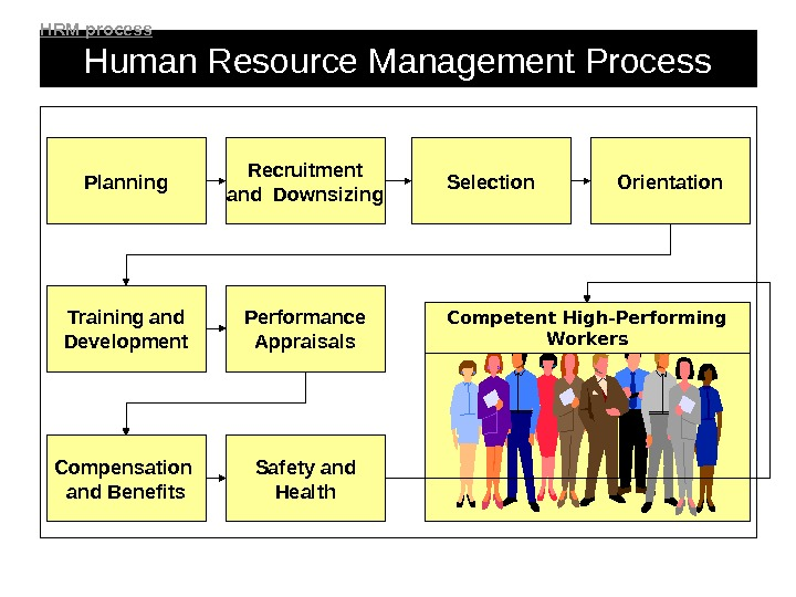 Human Resource Management Process Planning Recruitment and Downsizing Selection Orientation Training and Development Performance Appraisals Safety