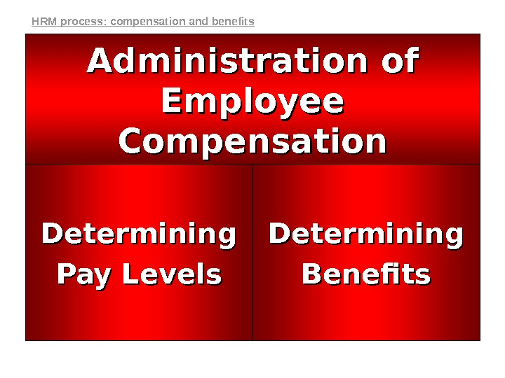 Determining Benefits. Determining Pay Levels Administration of Employee Compensation. HRM process: compensation and benefits