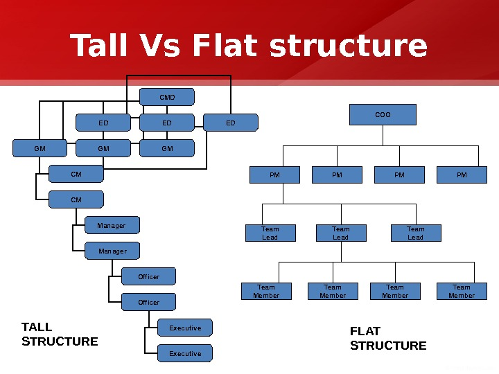 Tall Vs Flat structure CMD ED ED ED GM GM GM CM CM Manager Officer Executive.