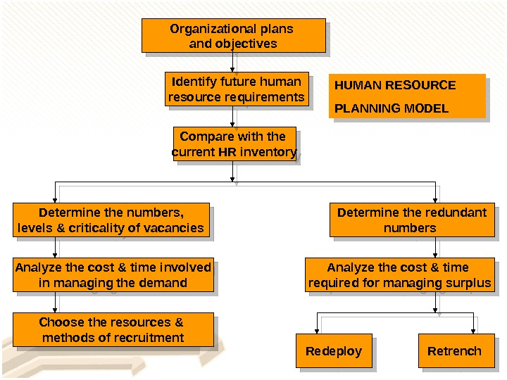 Organizational plans and objectives Identify future human resource requirements Compare with the current HR inventory Determine