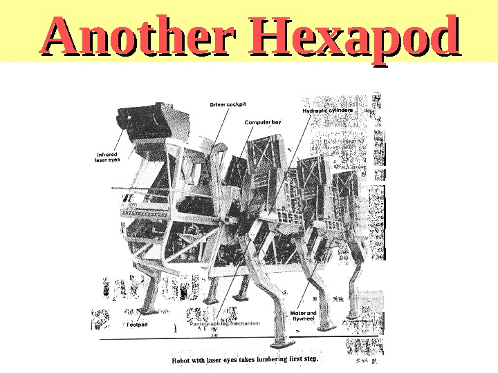 Another Hexapod