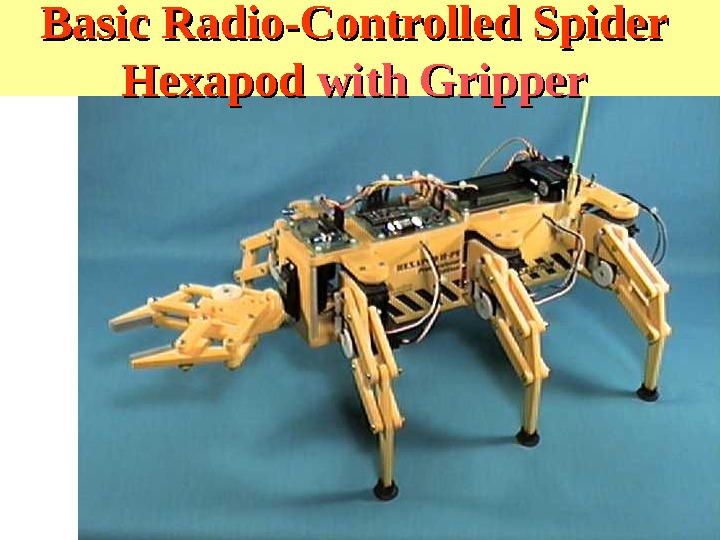 Basic Radio-Controlled Spider Hexapod with Gripper