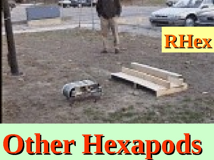 RHex Other Hexapods
