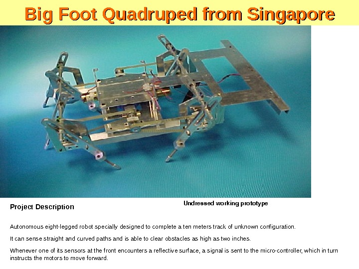 Project Description Autonomous eight-legged robot specially designed to complete a ten meters track of unknown configuration.