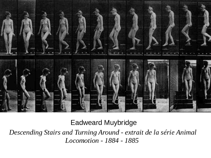 Descending Stairs and Turning Around - extrait de la série Animal Locomotion - 1884 - 1885