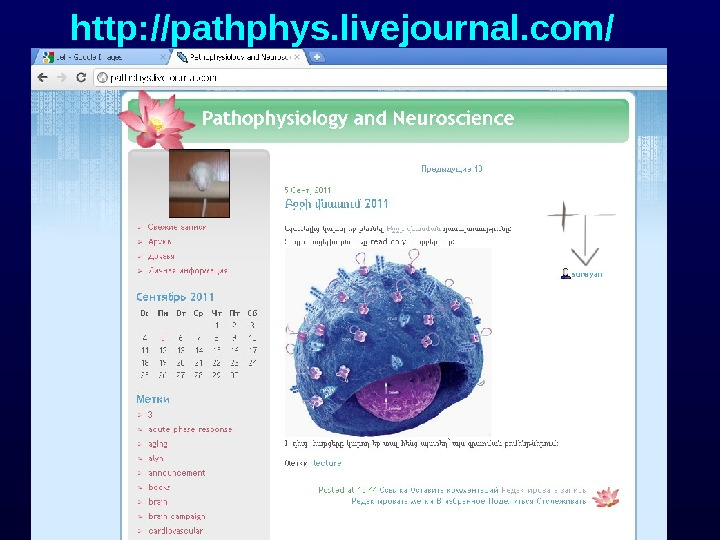 http: //pathphys. livejournal. com/