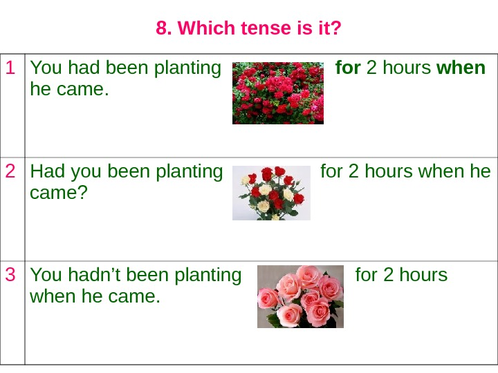8. Which tense is it? 1 You had been planting