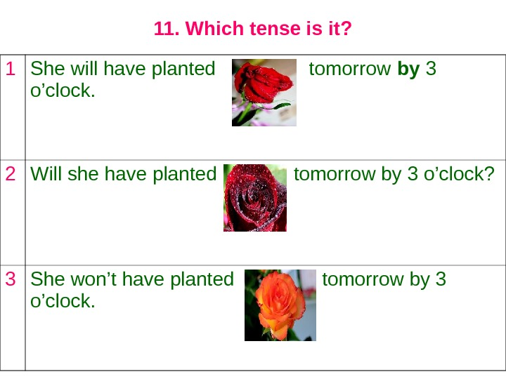 11. Which tense is it? 1 She will have planted   tomorrow by