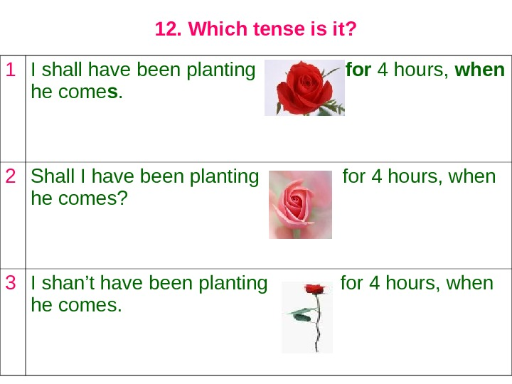 12. Which tense is it? 1 I shall have been planting   for