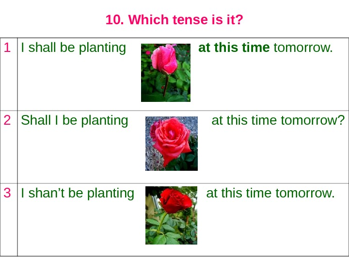 10. Which tense is it? 1 I shall be planting    at