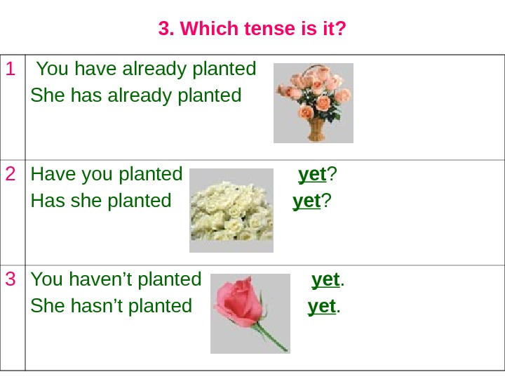 3. Which tense is it? 1  You have already planted She has already