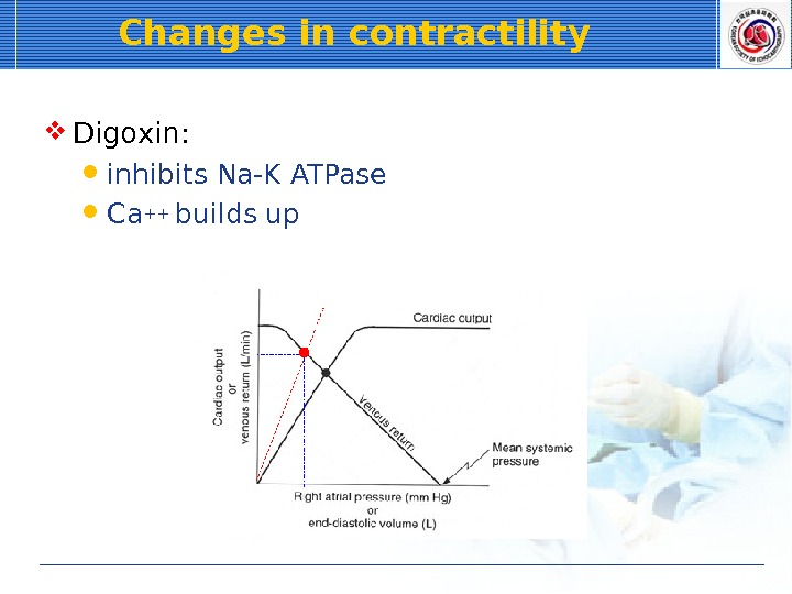 Changes in contractility  Digoxin:  inhibits Na-K ATPase Ca++ builds up