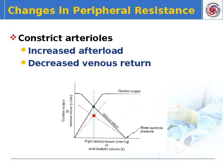 Changes in Peripheral Resistance Constrict arterioles Increased afterload Decreased venous return