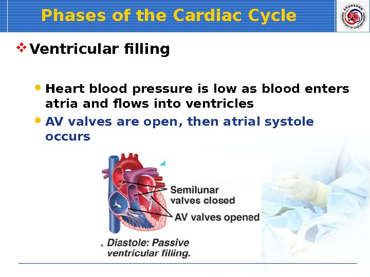 Phases of the Cardiac Cycle Ventricular filling  Heart blood pressure is low as blood enters