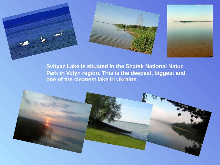 Svityaz Lake is situated in the Shatsk National Natur.  Park in Volyn region. This is