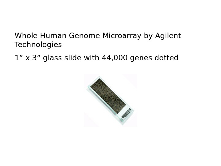 "Whole Human Genome Microarray by Agilent Technologies 1"" x 3"" glass slide with 44,"