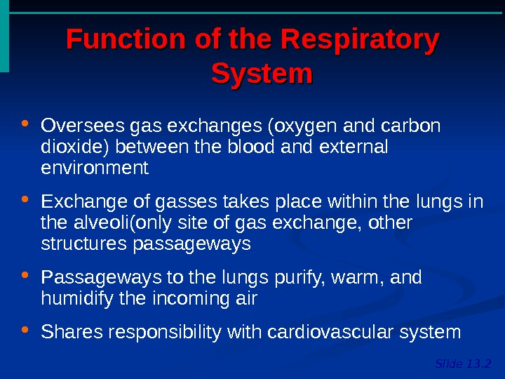 Function of the Respiratory System Slide 13. 2 Oversees gas exchanges (oxygen and carbon dioxide) between