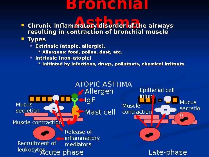 Bronchial Asthma Chronic inflammatory disorder of the airways resulting in contraction of bronchial muscle Types Extrinsic