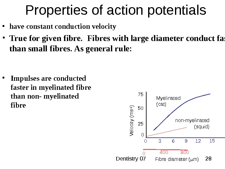 Dentistry 07 28 Properties of action potentials non-myelinated (squid) 0 800400 • have constant conduction