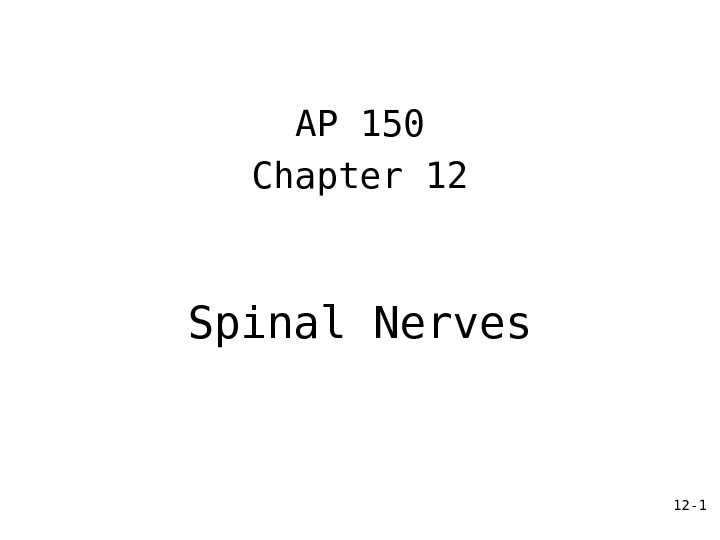 12 - 1 Spinal Nerves AP 150 Chapter 12
