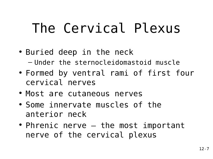 12 - 7 The Cervical Plexus • Buried deep in the neck – Under the sternocleidomastoid