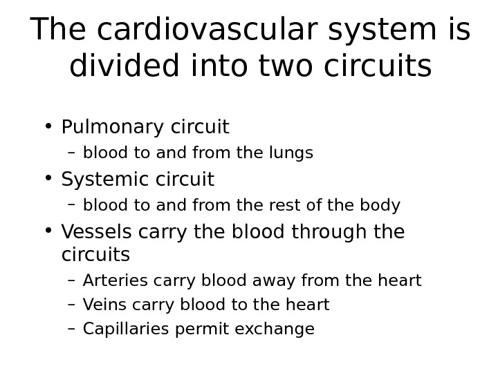 The cardiovascular system is divided into two circuits • Pulmonary circuit – blood to and from