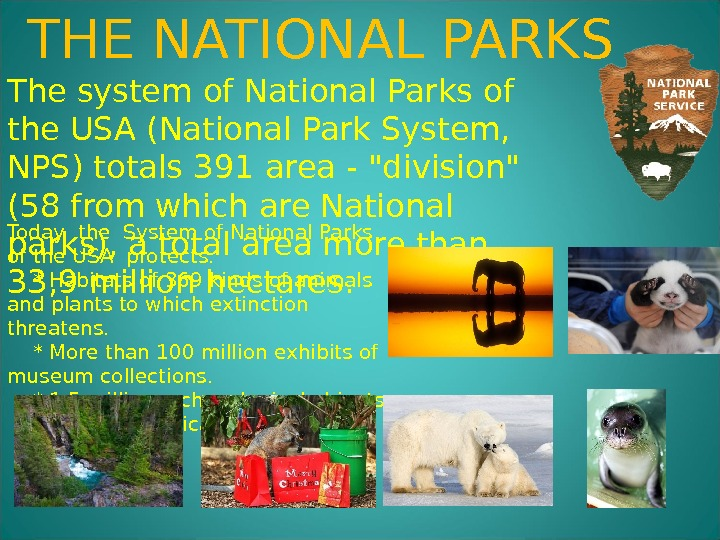 The system of National Parks of the USA (National Park System,  NPS) totals 391 area