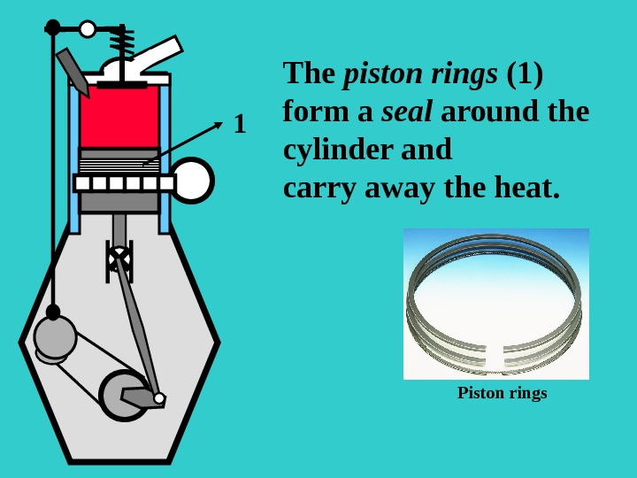 SO The piston rings (1) form a seal around the cylinder and carry away the