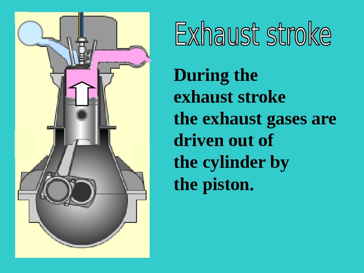 S During the exhaust stroke the exhaust gases are driven out of the cylinder by the