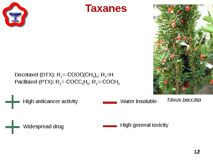 12 Taxanes Táxus baccáta  High anticancer activity Widespread drug Water insoluble High general toxicity. Docetaxel