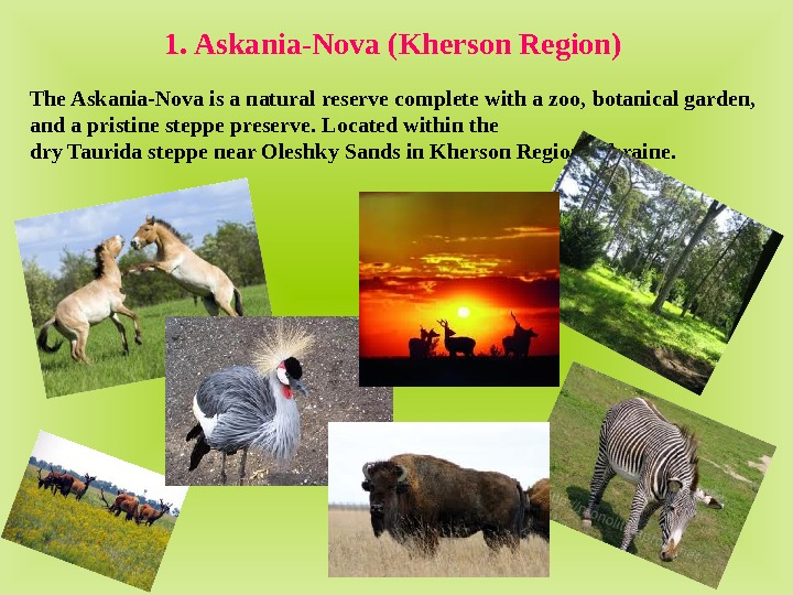 The Askania-Nova is a natural reserve complete with a zoo,  botanical garden,  and a