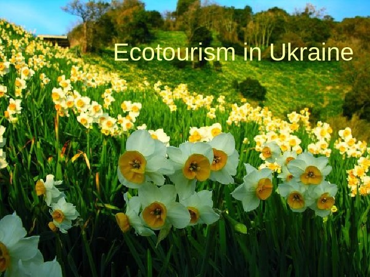 Ecotourism in Ukraine
