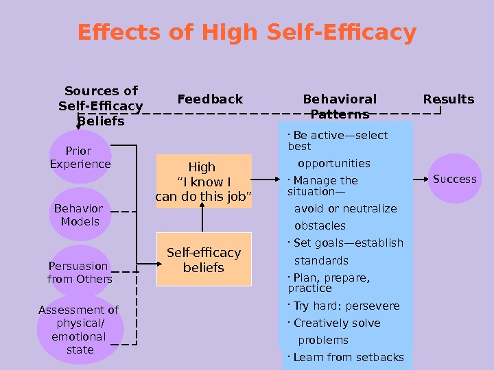 Effects of High Self-Efficacy Prior Experience Sources of Self-Efficacy Beliefs Feedback Behavioral Patterns Results High ""