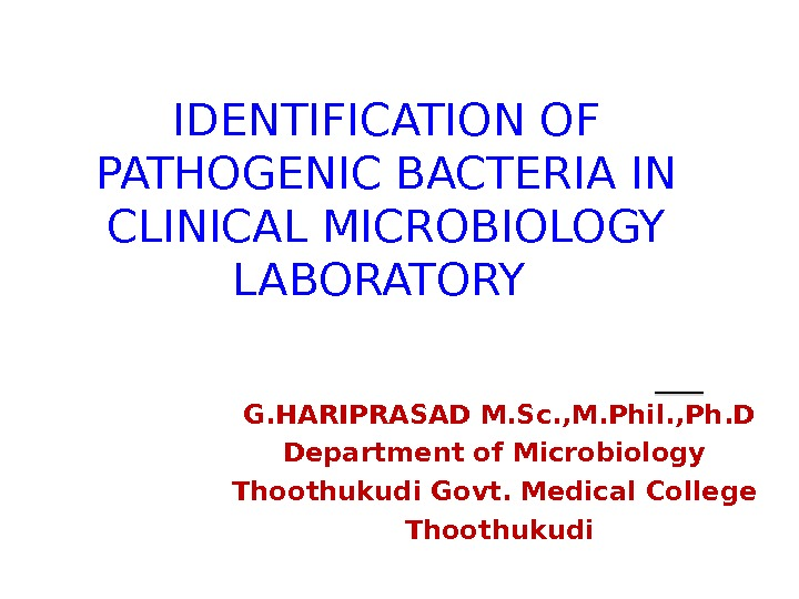 IDENTIFICATION OF PATHOGENIC BACTERIA IN CLINICAL MICROBIOLOGY LABORATORY G. HARIPRASAD M. Sc. , M. Phil. ,