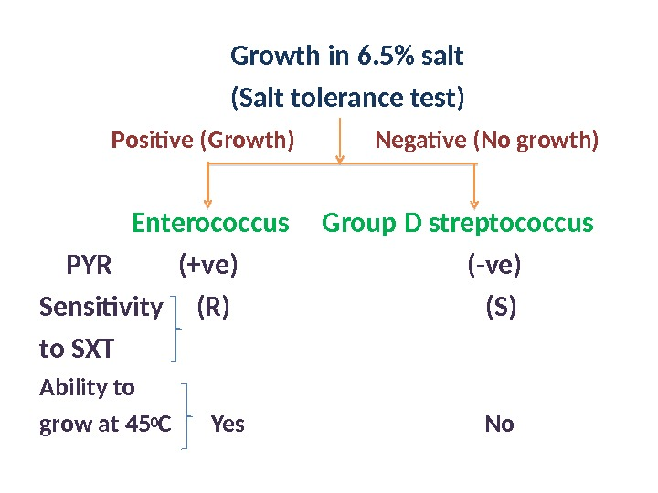 Growth in 6. 5 salt      (Salt