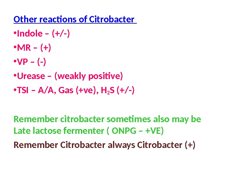 Other reactions of Citrobacter  • Indole – (+/-) • MR – (+) • VP –
