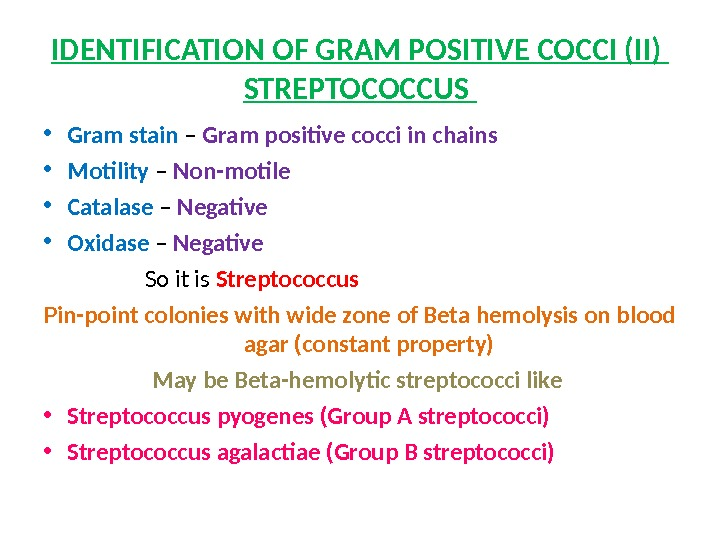 IDENTIFICATION OF GRAM POSITIVE COCCI (II) STREPTOCOCCUS  • Gram stain – Gram positive cocci in