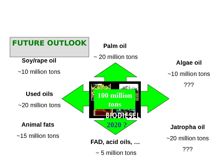 Soy/rape oil ~ 10 million tons Animal fats ~ 15 million tons Jatropha oil ~ 20