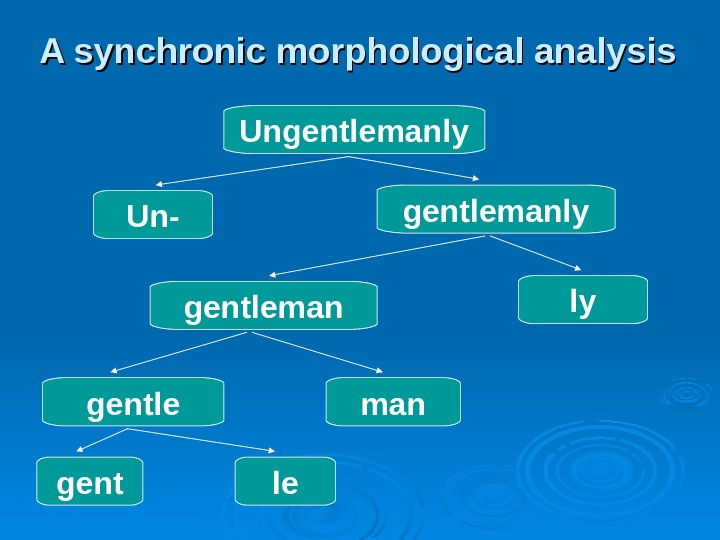 A synchronic morphological analysis Ungentlemanly Un- gentlemanly gentleman ly gentle man gent le