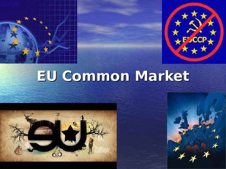 EU Common Market