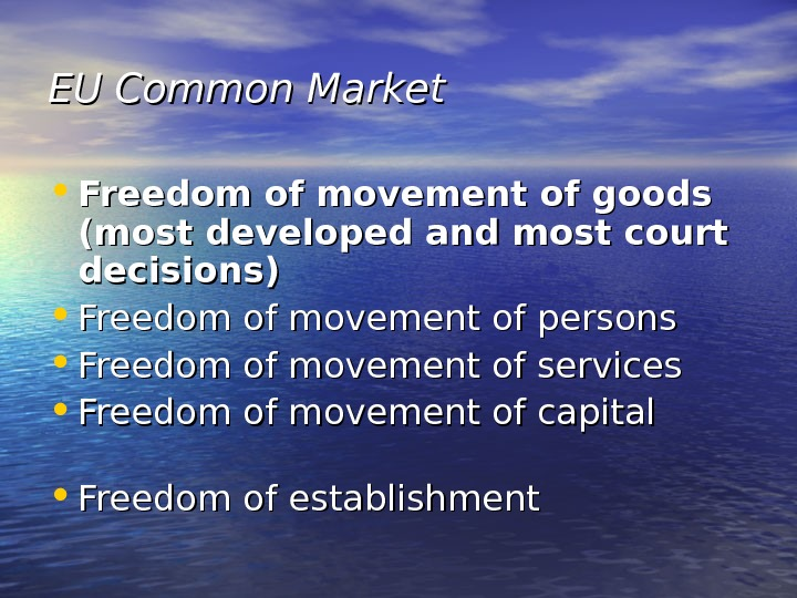 EU Common Market • Freedom of movement of goods (most developed and most court decisions) •