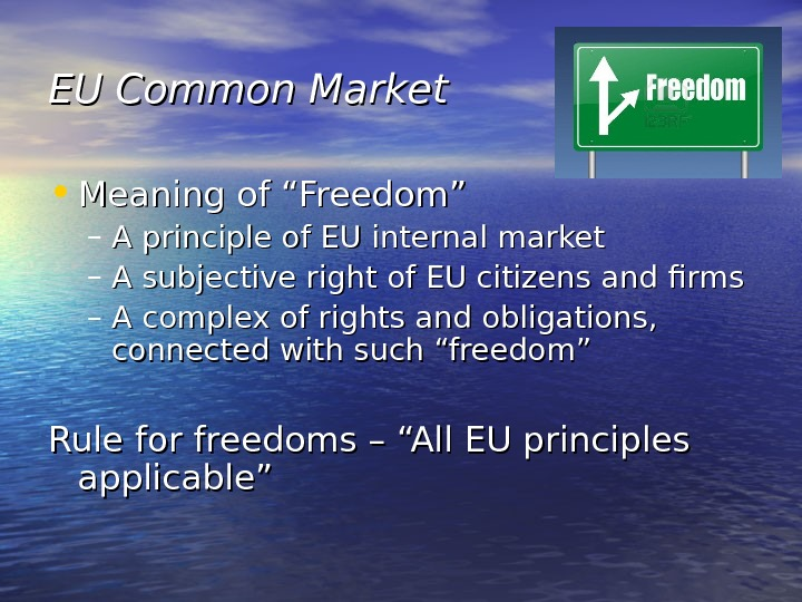 "EU Common Market • Meaning of ""Freedom"" – A principle of EU internal market – A"