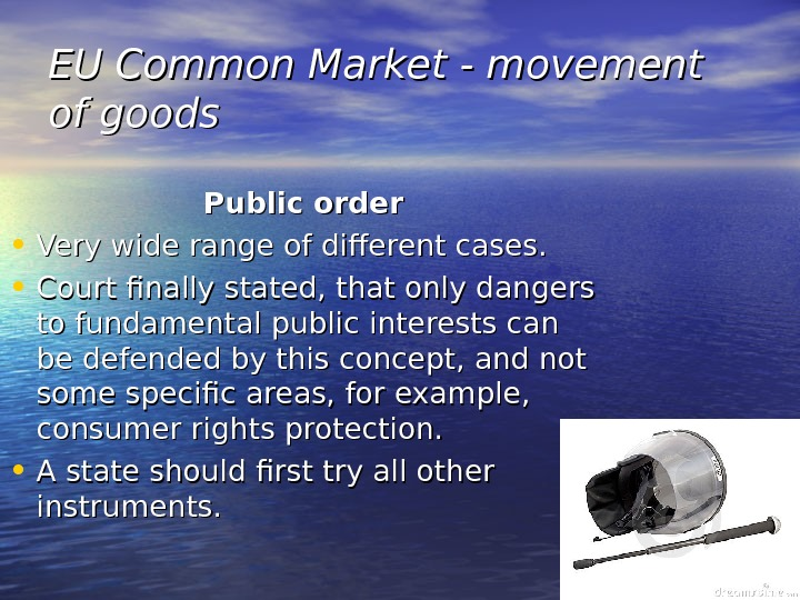 EU Common Market - movement of goods Public order • Very wide range of different cases.