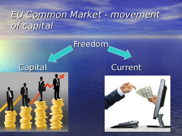 EU Common Market - movement of capital Freedom  Capital     Current payments